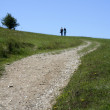 Old couple walking country trail — Stock Photo