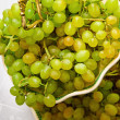 Many green bunch of grapes lay on plate — Foto Stock #5575498