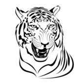 Tiger. — Stock Vector
