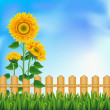 Background with sunflowers. Mesh. - 图库矢量图片