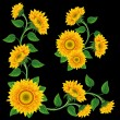 Sunflowers. — Stock Vector
