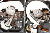 Hard disks — Stock Photo