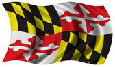Flag of Maryland — Stock Photo