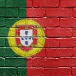 Flag of Portugal on brick wall — Stock fotografie