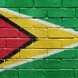 Flag of Guyana on brick wall — ストック写真