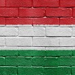 Flag of Hungary on brick wall — ストック写真