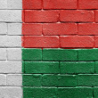 Flag of Madagascar on brick wall — ストック写真