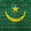 Royalty-Free Stock Photo: Flag of Mauritania on brick wall