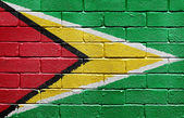 Flag of Guyana on brick wall — Stock Photo