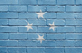 Flag of the Federated States of Micronesia on brick wall — Stock Photo