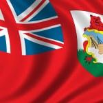 Flag of Bermuda — Stock Photo #5440336