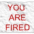 You are fired -  
