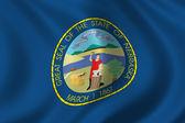 Flag of Nebraska — Stock Photo