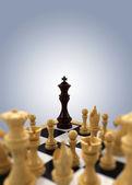 Chess king Cornered — Stock Photo