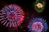 Feuerwerk am 4. juli — Stockfoto