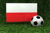 Calcio polonia — Foto Stock