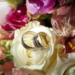 Wedding Rings — Stock Photo #6233887