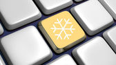 Keyboard (detail) with snowflake key — Stock fotografie