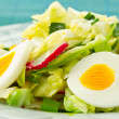 Stock Photo: Spring salad of cabbage and radishes