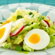 Spring salad of cabbage and radishes — Stock Photo #5585141