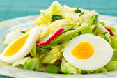 Spring salad of cabbage and radishes — Stock Photo