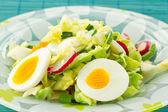 Spring sallad på vitkål och rädisor — Stockfoto
