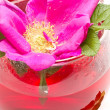Stock Photo: Wild rose flower and tea