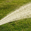 Watering lawns — Stock Photo