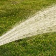 Watering lawns — Stock Photo #5837743