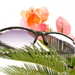 Sunglasses — Stock Photo #5850931