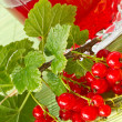 Compote of red currants — Stock Photo #5905637