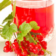 Compote of red currants — Stock Photo