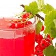 Compote of red currants — Stockfoto