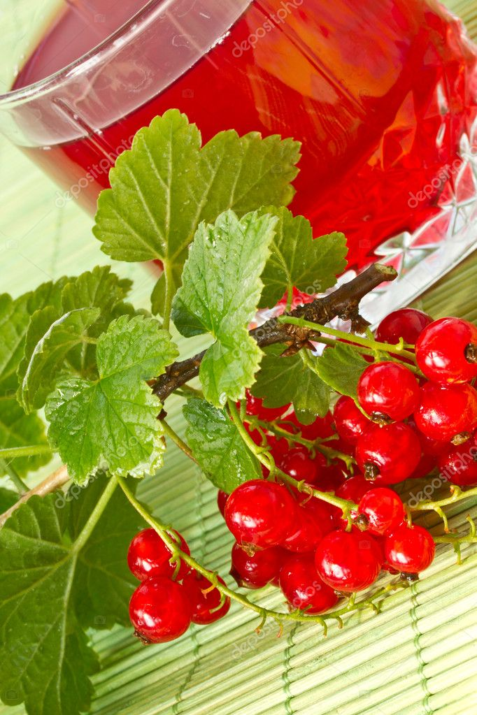 Delicious compote of fresh red currants  Stock Photo #5905637