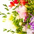 Flowers — Stock Photo #5962768