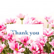 "Stock Photo: ""thank you"""