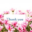 "Foto de Stock  : ""thank you"""