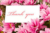 """thank you"" — Stock fotografie"