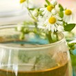 Chamomile tea — Stock Photo #6299240