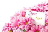 Bukett med rosa blommor — Stockfoto