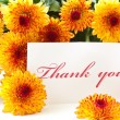Thank you - Foto Stock