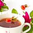 Tea with rosehip — Stock Photo