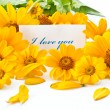 I love you — Stock Photo #6695547