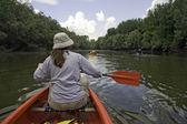 Canoeing at Danube — Stock Photo