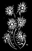 Woodcut Flowers Black — Stock Vector