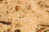 木材おがくず、shavings、自然な背景 — ストック写真