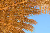 Parasol made ​​of palm leaves — Stock fotografie