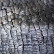 Closeup of burned tree trunk surface — Stock Photo #5819496