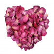Rose heart — Stock Photo #5600117