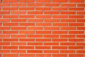 砖墙 — 图库照片